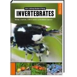 Invertebrates Chris Lukhaup & Reinhard Pekny
