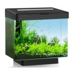 Juwel Vio 40 Aquarium Black
