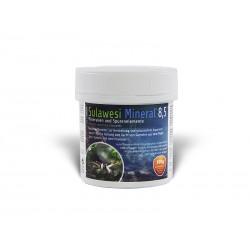 Salty Shrimp - Sulawesi Mineral 8.5 100g