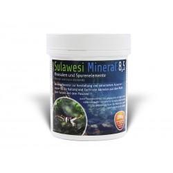 Salty Shrimp - Sulawesi Mineral 8.5 250g