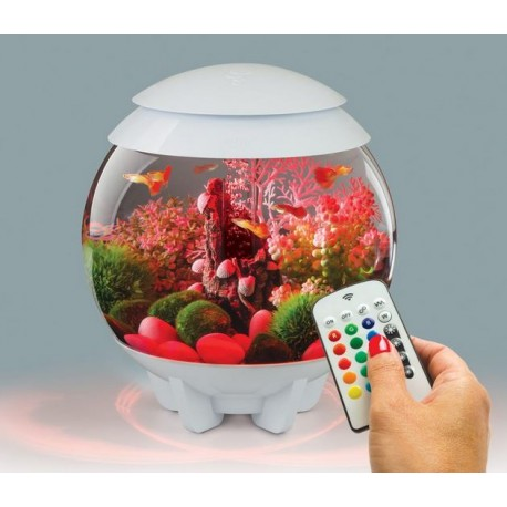 biorb halo 30 mcr aquarium acryl white. Black Bedroom Furniture Sets. Home Design Ideas