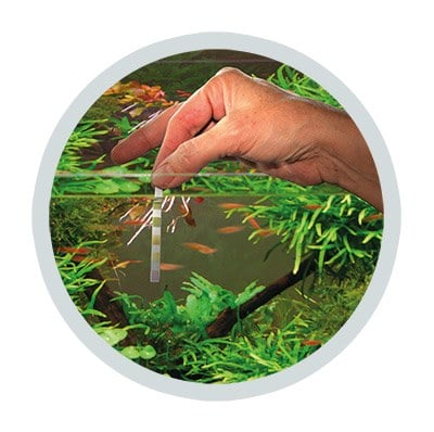 Easy-Life test strips for aquarium water parameters