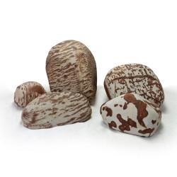 Speckled Rock (per kg)