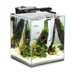 Aquael Shrimp Set DUO 49L Black