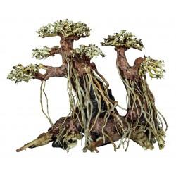 Bonsai Driftwood Twin Tree M 22x15x21cm