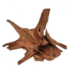 Corbo Catfish Root Medium