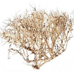 Ramous Wood 30-45cm