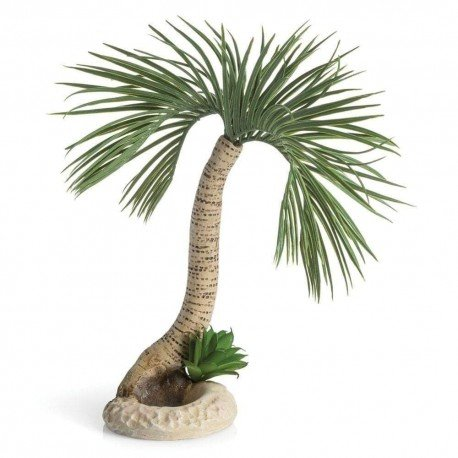 biOrb Palm Tree Seychelles Large