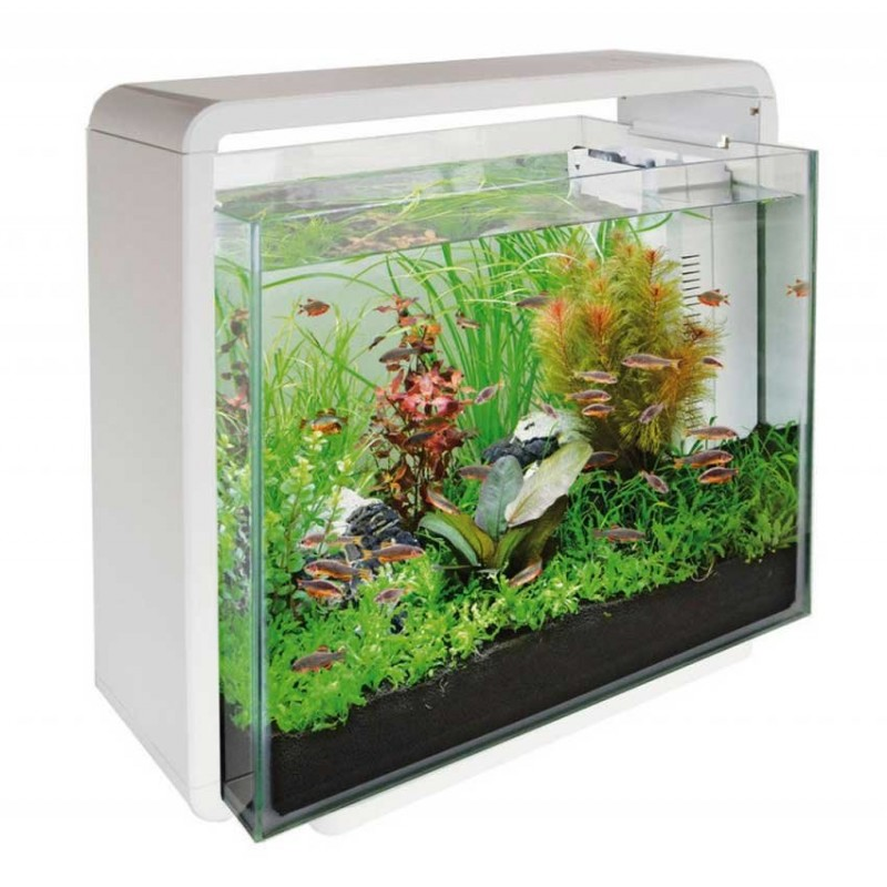 Superfish home 40 aquarium white for Aquarium 80 litres