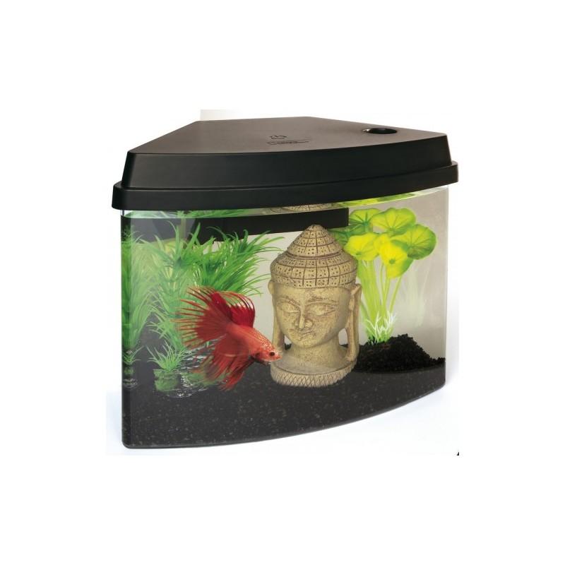 Superfish cascade 4 mini aquarium for Mini poisson aquarium