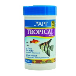 API Tropical Flakes 31g