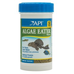 API Algae Eater Wafers 39g
