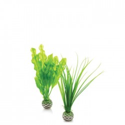 biOrb Easy Aquarium Plant Set Small 20cm