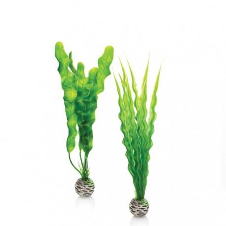 biOrb Easy Aquarium Plant Set Medium 29cm