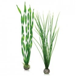 biOrb Easy Aquarium Plant Set Medium 29cm