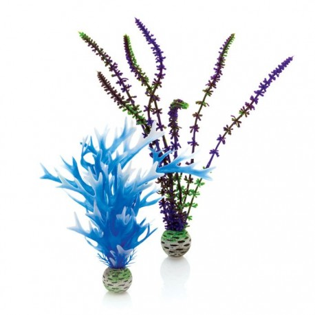 biOrb Plant Colour Pack Blue & Purple - Medium 20-29cm