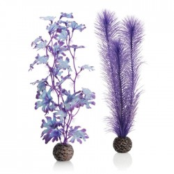 biOrb Purple Kelp Plant Pack Medium 29cm