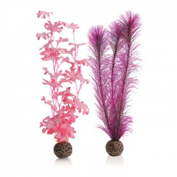 biOrb Pink Kelp Plant Pack Medium 29cm