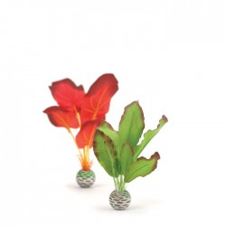 biOrb Red/Green Silk Plant Pack 20cm