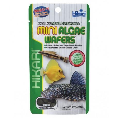 Hikari Mini Algae Wafers 20g - Pleco & Bottom Feeders