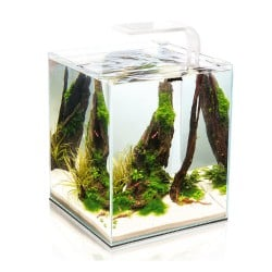 Aquael Shrimp Set Smart LED 20 - Black