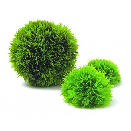 biOrb Topiary Moss Ball Set
