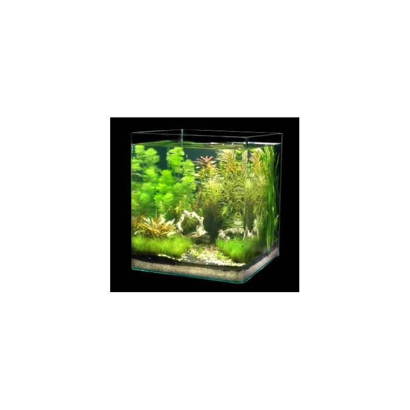 dennerle nano cube 60l aquarium shrimp tank pro shrimp uk. Black Bedroom Furniture Sets. Home Design Ideas