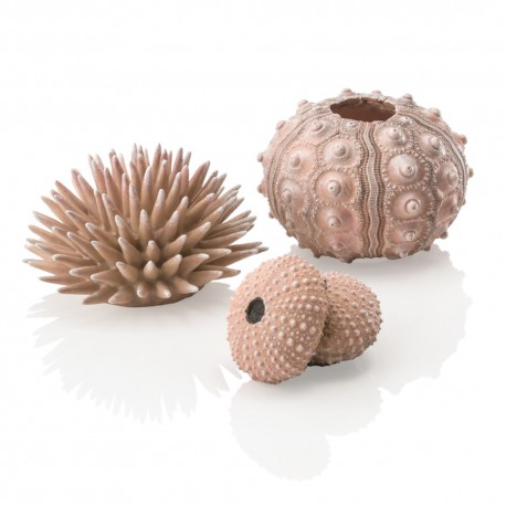 biOrb Sea Urchins Set Natural (3 Pack)
