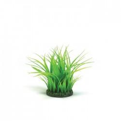 biOrb Grass Ring Small 15cm