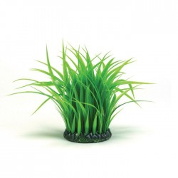 biOrb Grass Ring Small 15cm