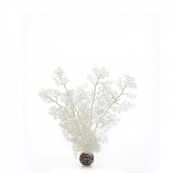 biOrb Sea Fan White Small 20cm