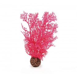 biOrb Sea Fan Pink Small 20cm