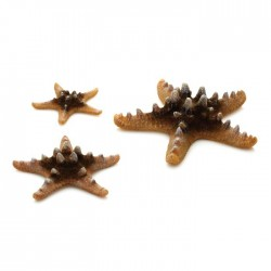 biOrb Sea Stars Natural (3 Pack)