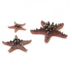 biOrb Sea Stars Pink (3 Pack)
