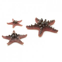 biOrb Sea Stars Pink (3 Pack)