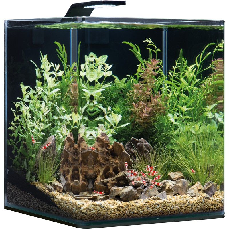 Dennerle Nano Cube 30l Complete Plus Style Led Aquarium Set