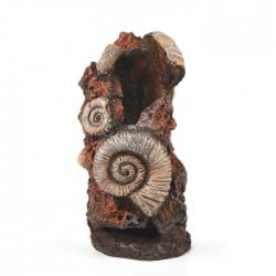 biOrb Ancient conch Ornament Medium 20cm