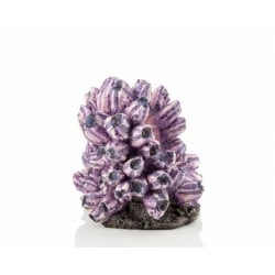 biOrb Barnacle Cluster Ornament Medium 19cm
