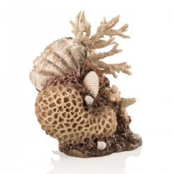 biOrb Coral Shell Ornament Medium 19cm