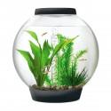 biOrb CLASSIC 15 Black Aquarium Standard LED