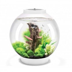 biOrb CLASSIC 30 White Aquarium Standard LED
