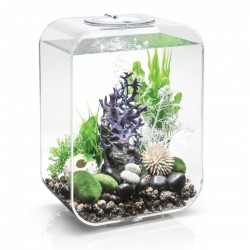 biOrb LIFE 15 Clear Aquarium Standard LED