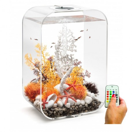 biorb life 60 60l aquarium clear mcr led light. Black Bedroom Furniture Sets. Home Design Ideas