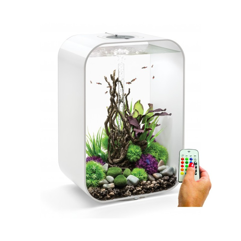 biorb life 60 60l aquarium white mcr led light. Black Bedroom Furniture Sets. Home Design Ideas