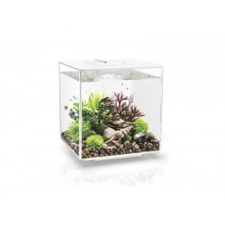 biOrb CUBE 30 White Aquarium Standard LED