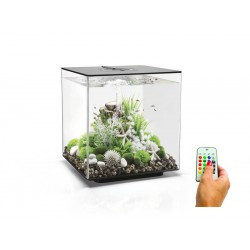 biOrb CUBE 60 Black Aquarium MCR LED
