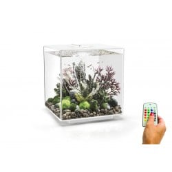 biOrb CUBE 60 White Aquarium MCR LED
