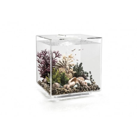 biOrb CUBE 60 Clear Aquarium Standard LED
