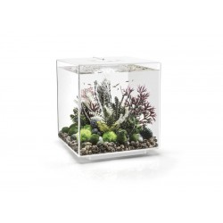 biOrb CUBE 60 White Aquarium Standard LED