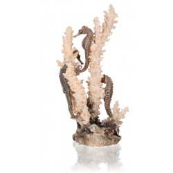 biOrb Seahorses on Coral Ornament Natural Medium 28cm